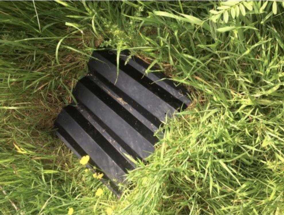 Cladco roofing sheets used for reptile surveys